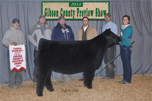 2014 Gibson County Preview Show champ cross & 3rd overall